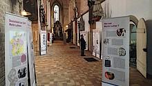 Ausstellung Sudschiff